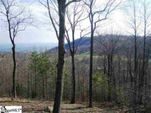 The Cliffs Lots for Sale - 14 High Cliffs Way, Landrum SC, CAG-3-304